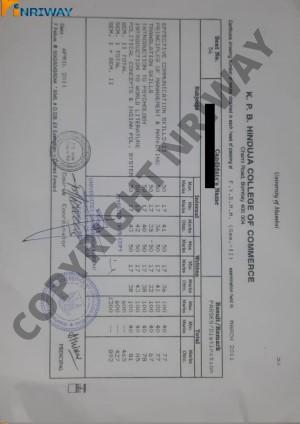 transcript from mumbai university